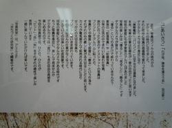 Dscn0197_4